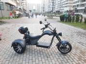 Купить SKYBOARD TRIKE CHOPPER-2000